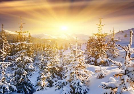 o inverno começa com o solstício