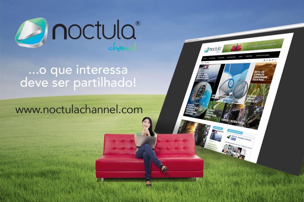 noctula channel