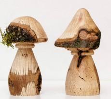 cogumelos da Tomelo