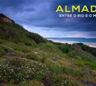 Vida Selvagem do concelho de Almada exposta num filme de Ricardo Guerreiro e Luis Quinta