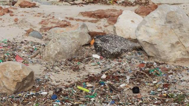 praia atingida por maré de plástico