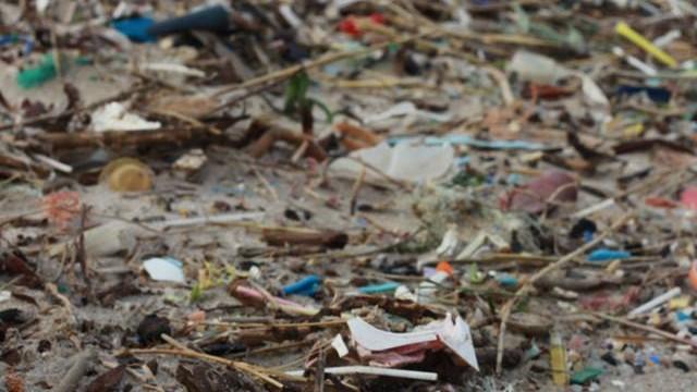 praia coberta de plástico