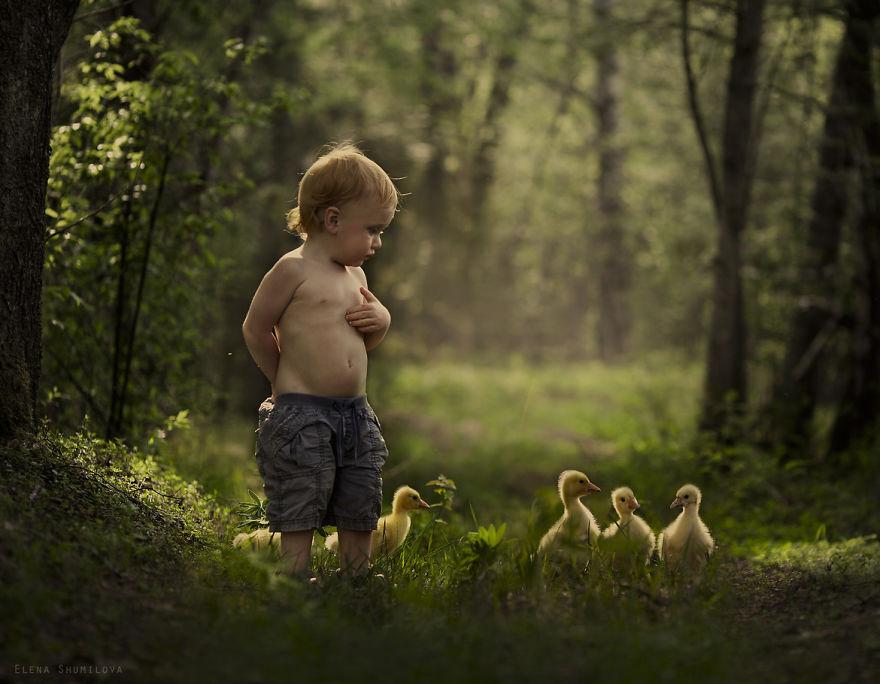 animais crianças quinta fotografia Elena Shumilova patos