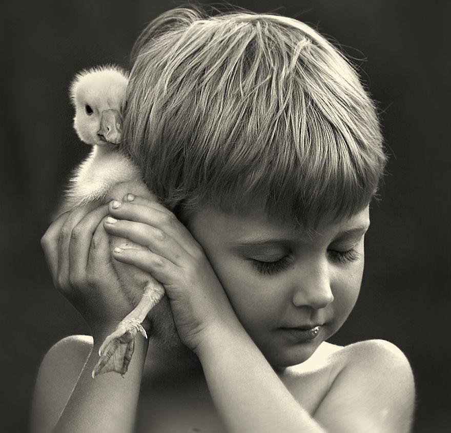 animais crianças quinta fotografia Elena Shumilova pato