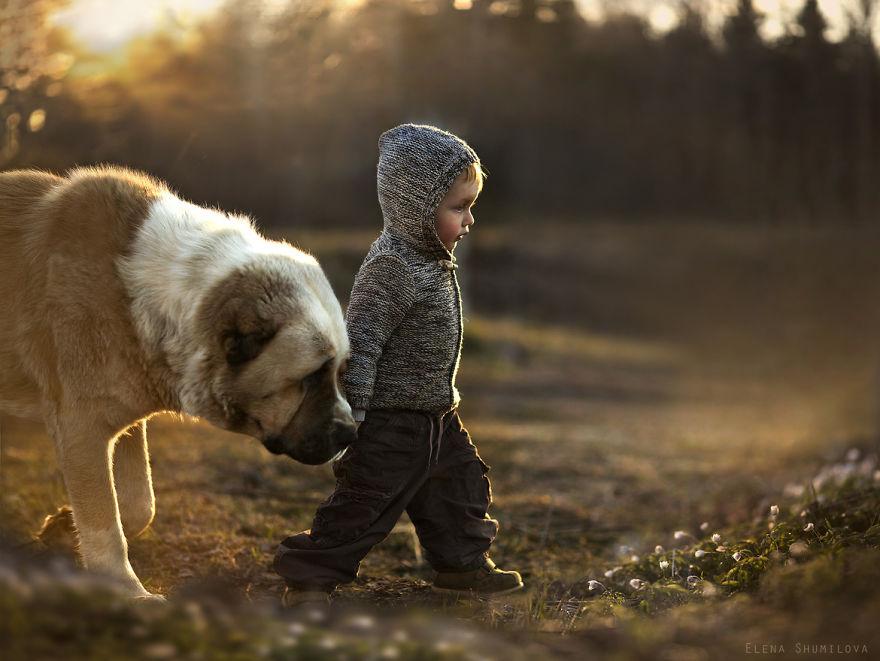 animais crianças quinta fotografia Elena Shumilova cão