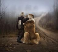 irmãos animais crianças fotografia quinta cão