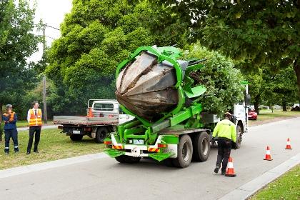 ClydeRoad-transporte-árvore-camião