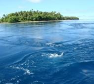 Andou à deriva 16 meses pelo oceano Pacífico.