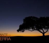 cante da terra Daniel Pinheiro