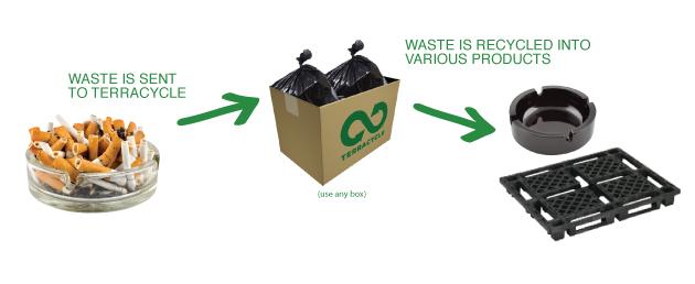 cigarros-reciclagem-noctula