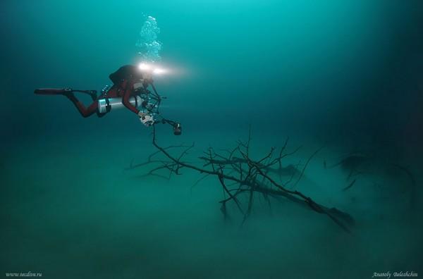 rio-salgado-cenote-angelita-mexico-mergulhador
