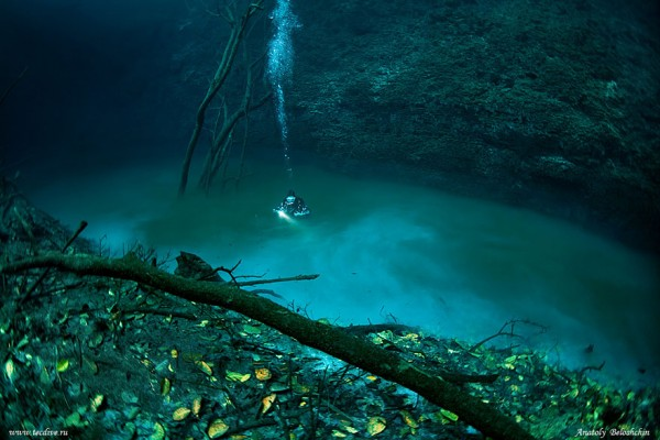 rio-salgado-cenote-angelita-mexico-mergulhador2