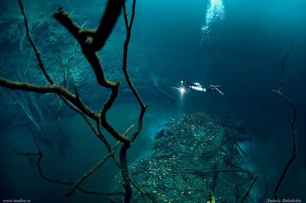 rio-salgado-cenote-angelita-mexico-mergulhador3