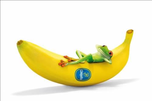 Chiquita i Rainforest Alliance