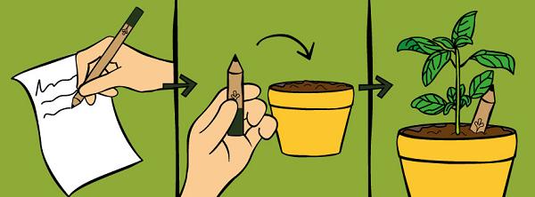 reutilizar lápis