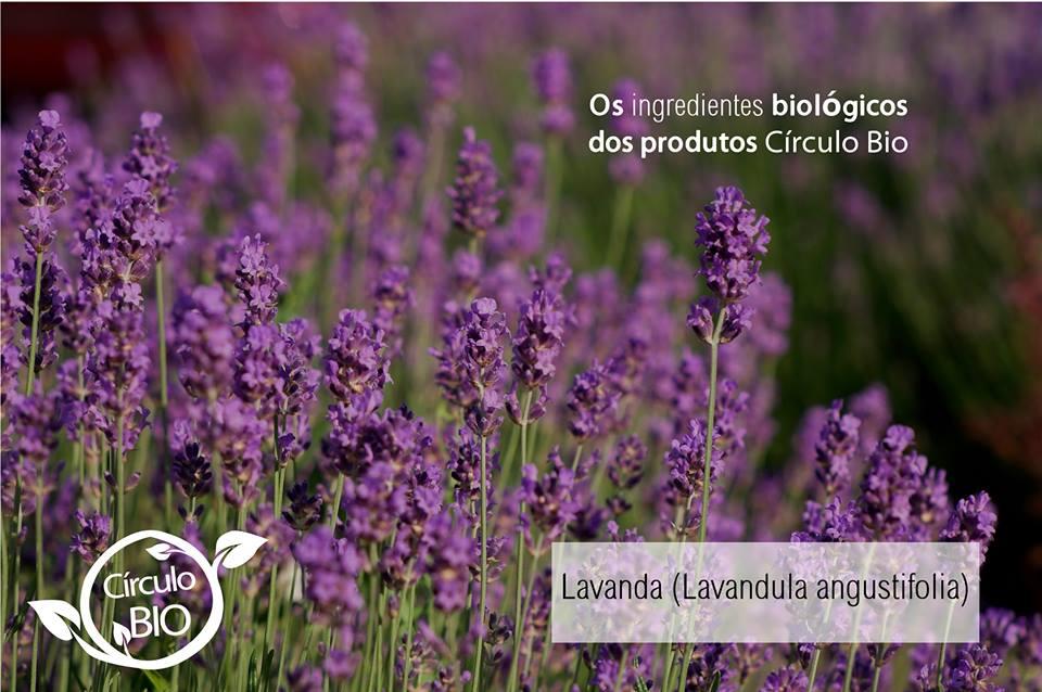 alfazema círculo bio cosmética biológica