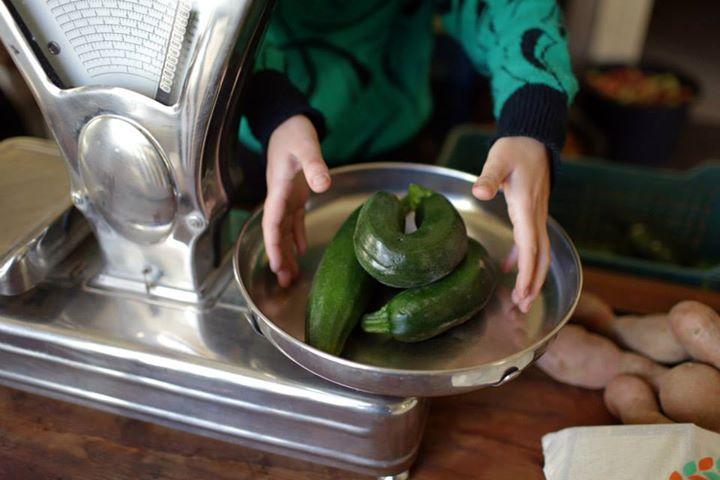 courgette fruta feia abobrinha