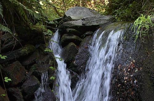 fraga da pena cascata queda água