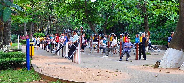 pessoas a fazer exercício parque jardim máquinas