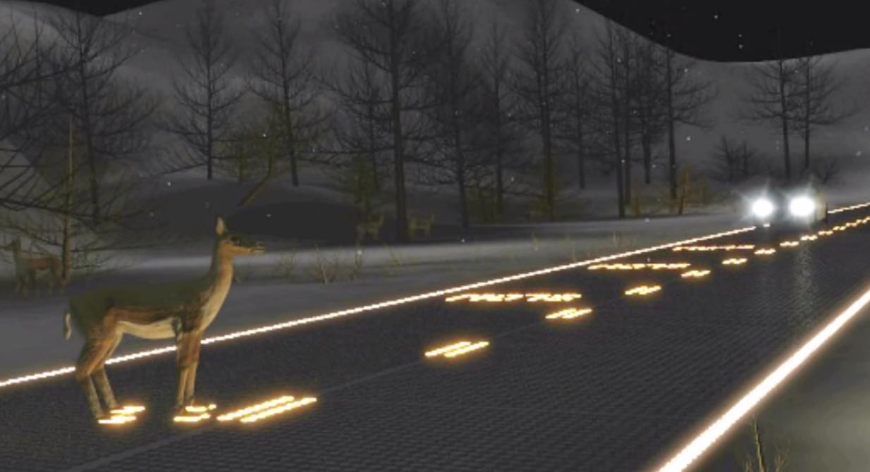 veado animail estrada perigo solar roadways