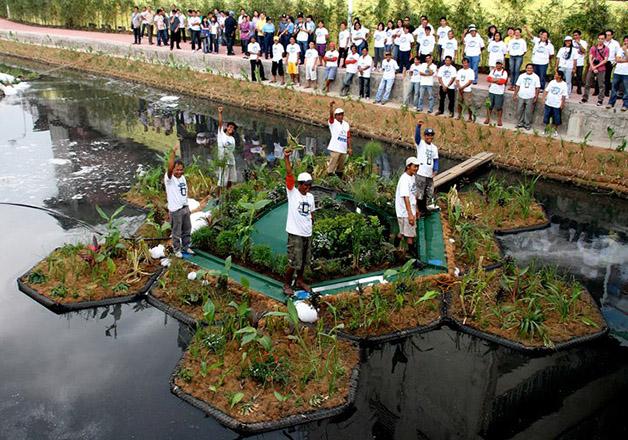 ilha tratamento água poluição rio