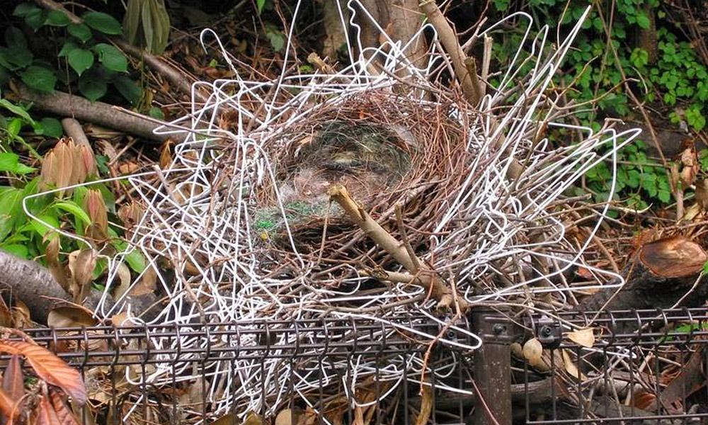 ninhos cabide cruzeta corvo