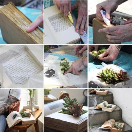 vasos plantas livros