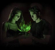Dan Saunders planta candeeiro bioluminescencia