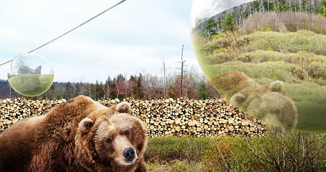 Givskud Zoo urso teleférico