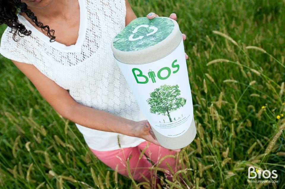 bios urn urna biodegradável
