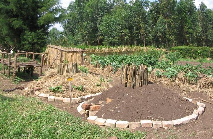 como fazer uma horta mandala