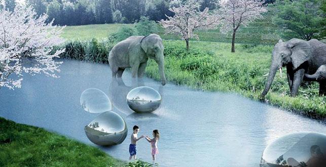 elefantes zoológico rio crianças