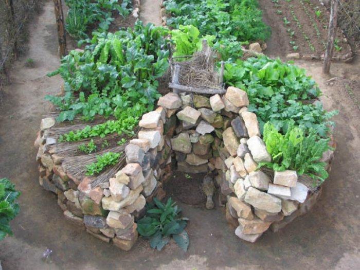 mandala horta circular
