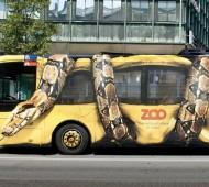 marketing zoologico copenhaga autocarro