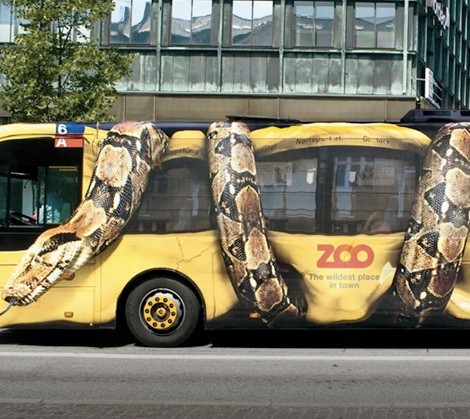 marketing zoologico copenhaga autocarro