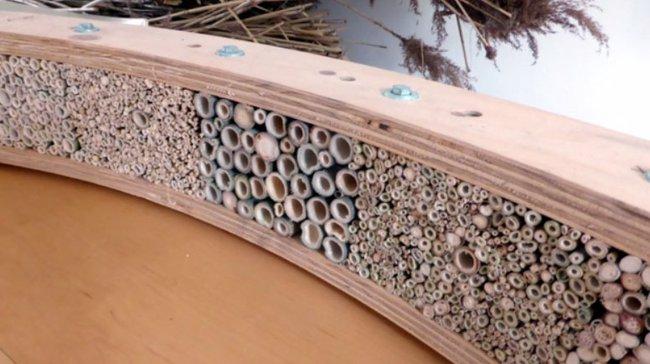 Buzzbench-AnneMarie-van-Splunter abelhas jardim