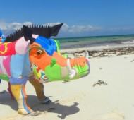 javali de plástico praia ocean-sole-flip-flop-beach-warthog