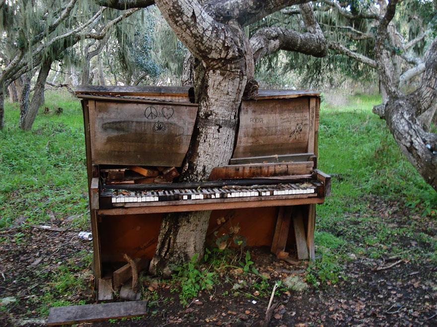 natureza locais abandonados piano california