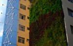 parede verde jardim vertical minhocão sao paulo