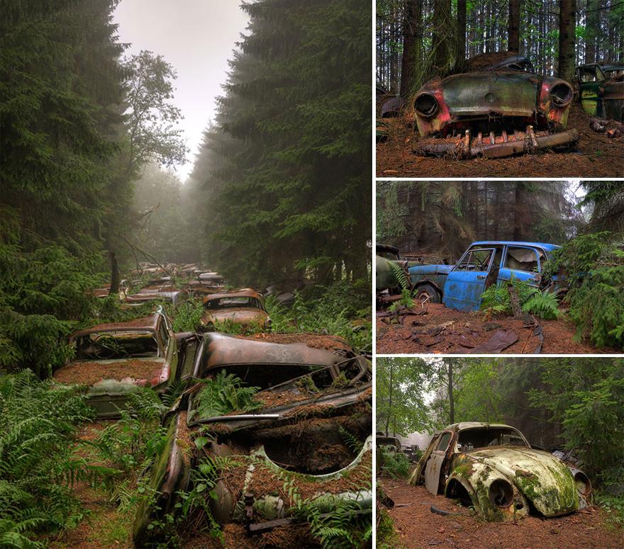 sucata abandonada carros velhos ferro velho