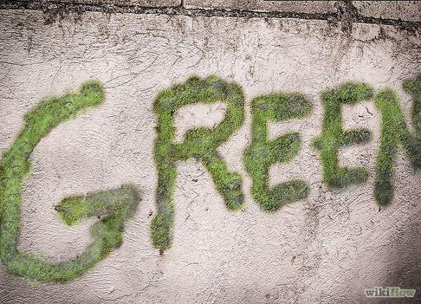 como fazer graffiti de musgo_1