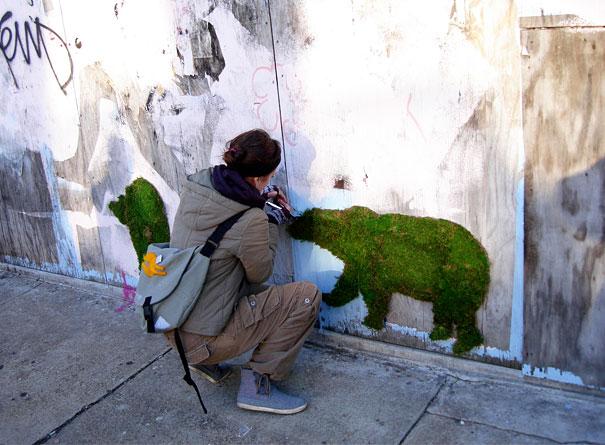 moss graffiti urso arte urbana