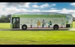 autocarro gás cocó