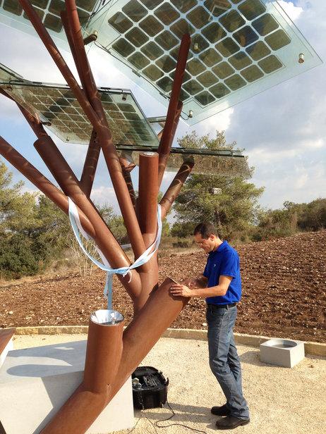 solar tree internet jardim israel