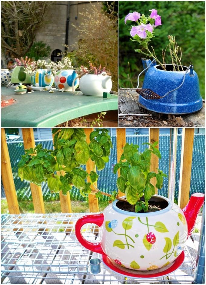 bules velhos vasos de flores e plantas aromáticas
