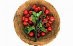 nurture-cesto-de-fruta-vivo-alimentos frescos