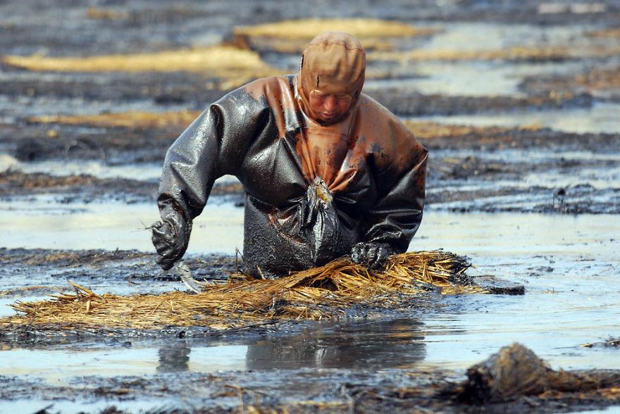 poluição cinha água petróleo