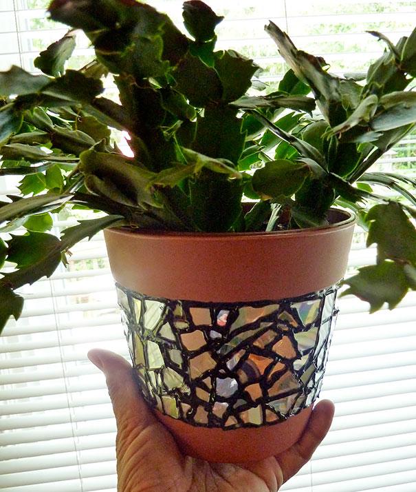 vaso de plantas reformado