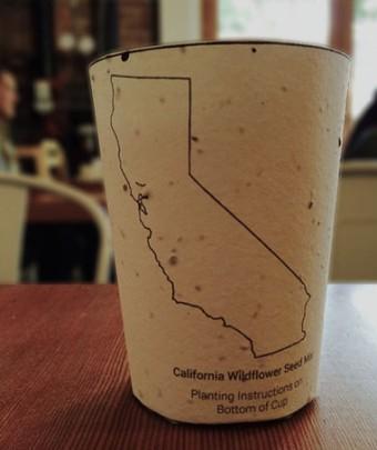 A empresa americana do Estado da Califórnia chamada Reduce. Reuse. Grow. criou um copo de café que, para além de ser biodegradável, tem sementes para que possa dar origem a plantas!