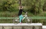 Bicicleta ELIP é a primeira bicicleta cujas rodas não são redondas e é uma invenção portuguesa.
